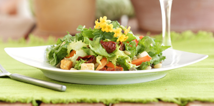 Organic Salad with Pine Nuts